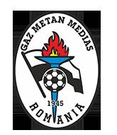 Logo Gaz Metan